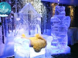 Ingresso Boreal Ice Bar Gramado Parque Temático