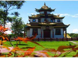 Tour Templo Budista e Compras
