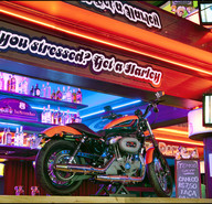 Harley motor show %282%29