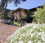 Jardim da mina 400x267